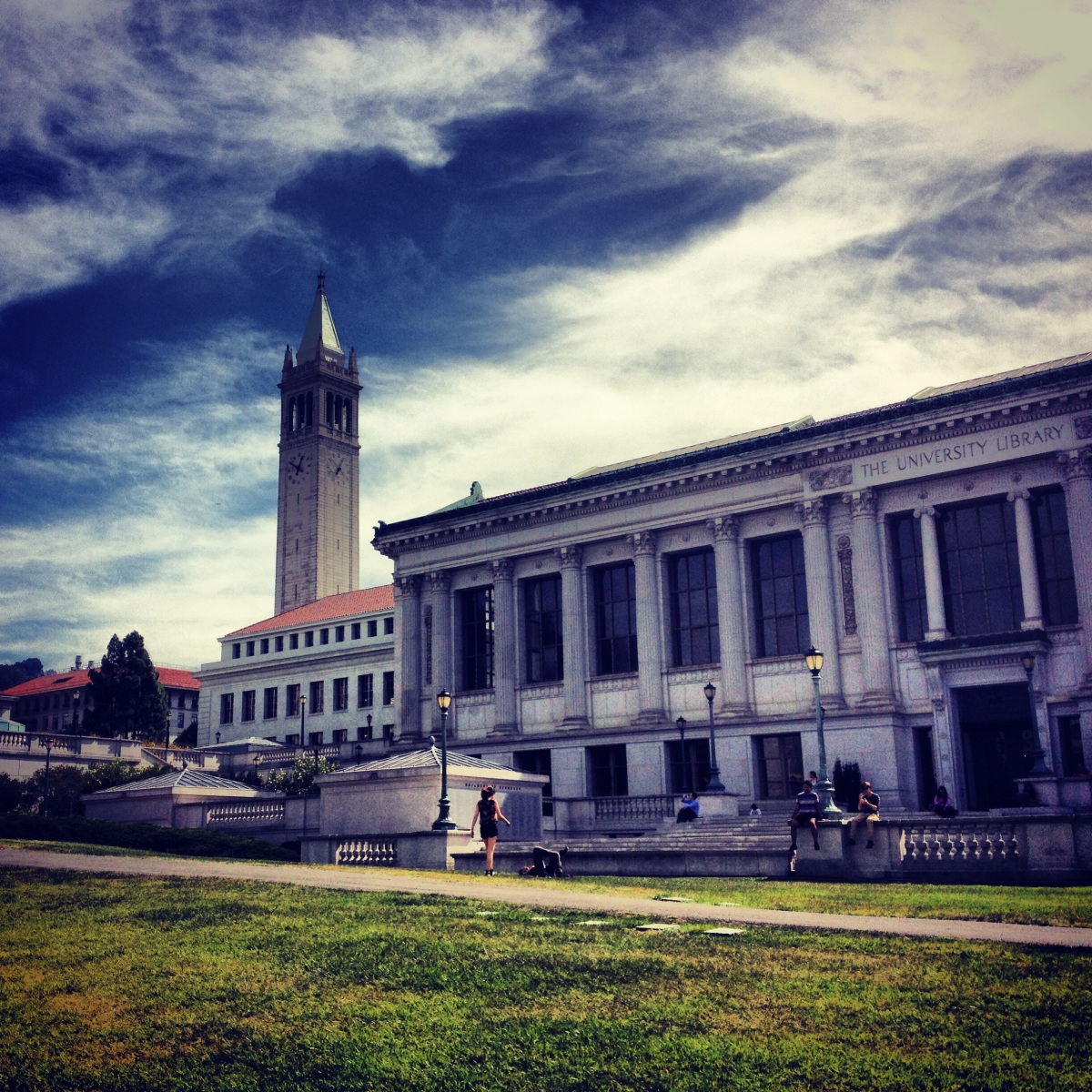 Uc berkeley transfer application essay
